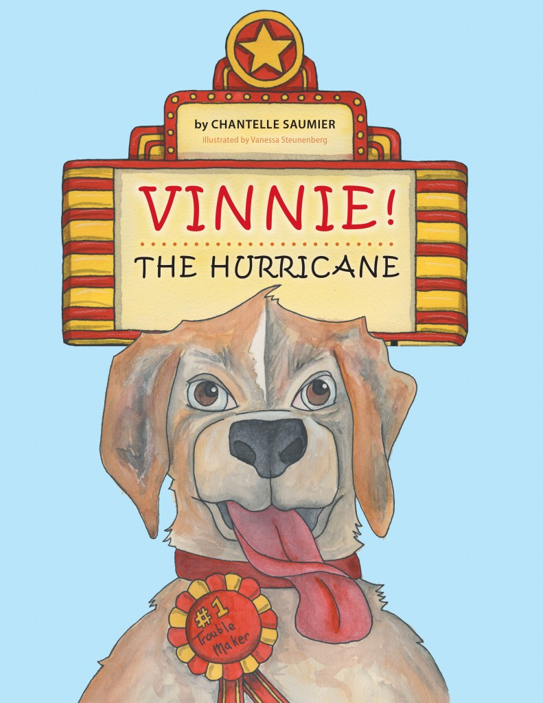 Cover image of Vinnie! The Hurricane